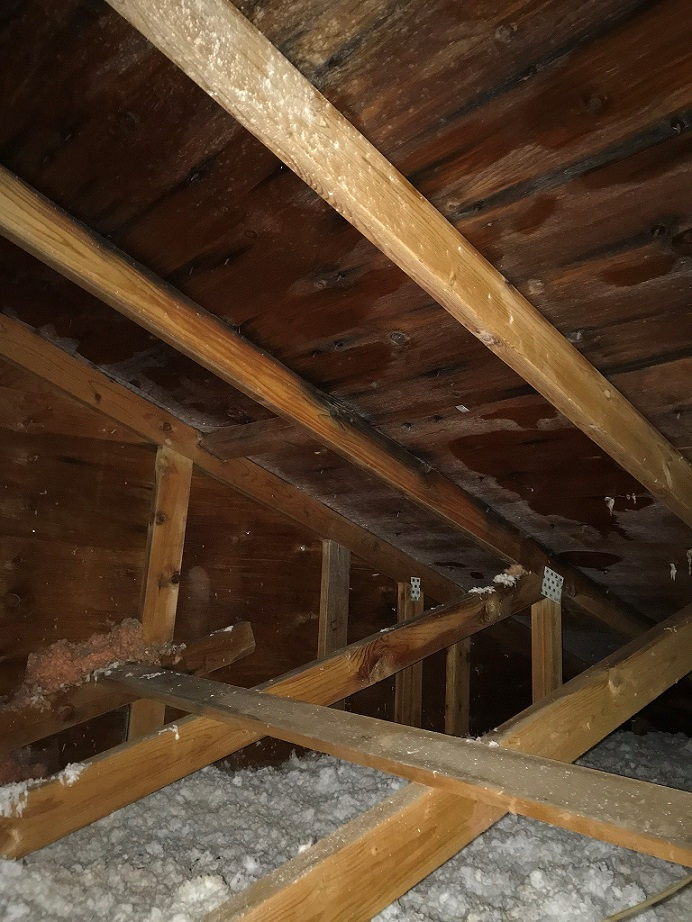 attic rain buildup in a home